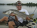 Snook Fishing _1