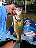 Sardis Bucket Mouth_1
