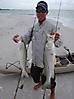 snook fishing _2