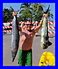 Kayak Fishing in Hawai\'i_2