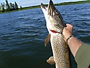 Alberta Fishing_2