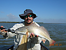 Redfish_1