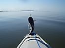 Calcasieu Lake  Lake Charles, LA_1