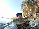 Table Rock Lake Largemouth Bass_1