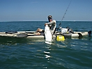 Tarpon fishing _2