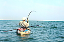 Tarpon fishing _1