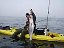 Jamaica Bay Weakfish