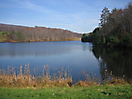 Small NJ pond_1