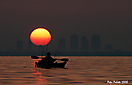 Tampa Bay Sunrise_1