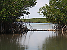 Indian River Lagoon Florida_1