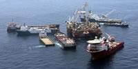 Toughts Regarding the Gulf Oil Spill