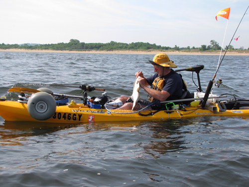 KayakJohn has a big wheel cart strapped to the front of his kayak