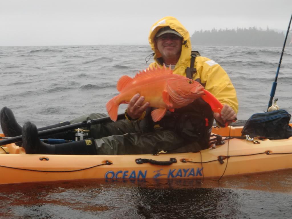 Kayak Yelloweye