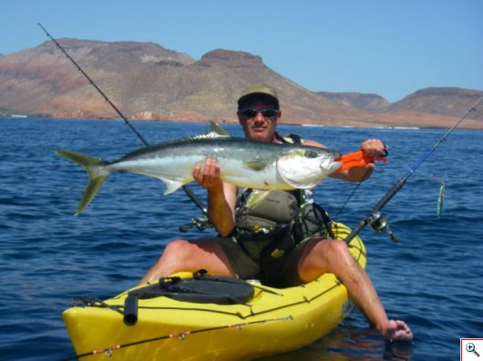 Danny with a very nice yellowtail