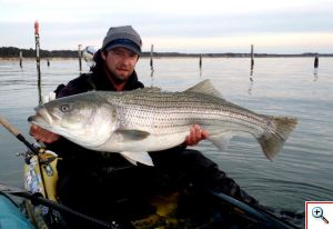 708 kev 44iinch striper