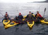The Four - Salmon Shark fishermen