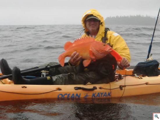 Kayak Yelloweye