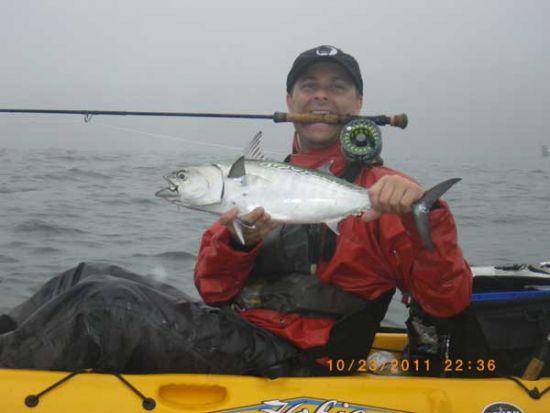 kayak fishing for albies