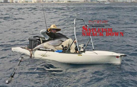 sailfish - copy 2